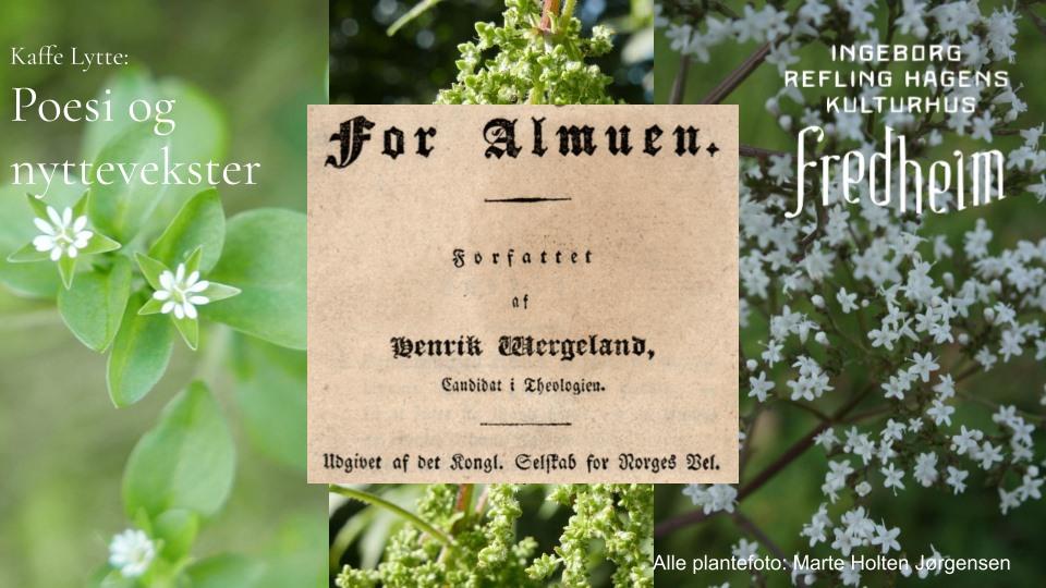 Poesi og nyttevekster fra «For almuen»